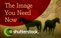 как купить фотографии через Shutterstock