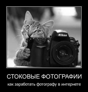 Заработок на микростоках для фотографа